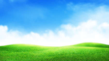 Green grass field and sunny sky with clouds over horizon. Soft focus wide summer landscape backdrop 免版税图像