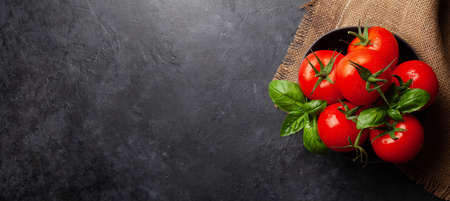 Fresh garden tomatoes and basil leaves. Top view flat lay with copy space Фото со стока