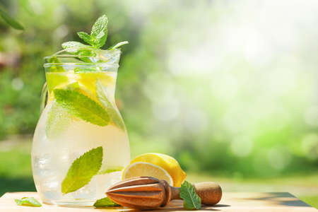 Fresh homemade lemonade with lemon and mint. Outdoor garden table on sunny day. With copy space