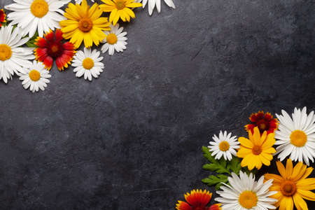 Chamomile flowers background. Garden daisy flowers over stone backdrop. Top view flat lay with copy space Standard-Bild