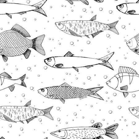Seamless vector sketches of sea and river fish animal. Pike, carp, perch, sardine isolated fish sketch, sport or fish market theme. Prints for clothing, textiles, paper and web.
