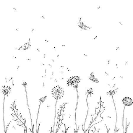 Dandelions. Fly seeds of dandelion. Vector illustration of a sketch. Summer background with flowers and butterfly.