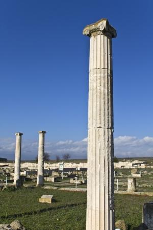 alexandros: Ancient Pella at Macedonia, Greece Stock Photo