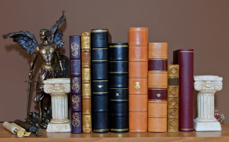 bind: Traditionally bind old leather books