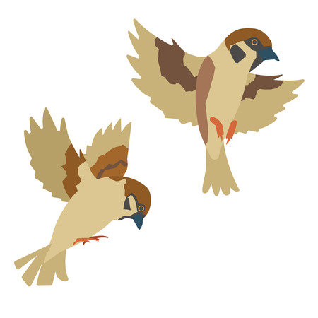 two sparrows which flies Illustration