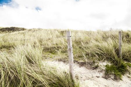 Zandduinen in Den Haag, Nederland