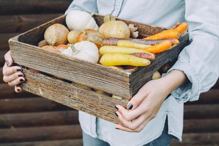 Autumn vegetables Stok Fotoğraf