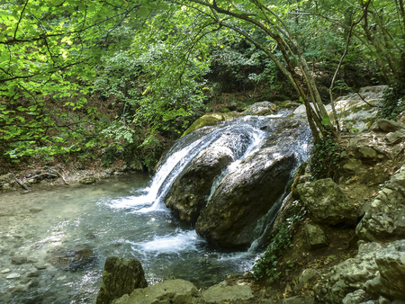 deciduous forest: The small falls from transparent clear water, which flows down from big stones in the green deciduous forest