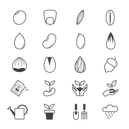 bean sprouts: Seeds and Gardening Icons Line Illustration