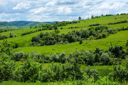 동유럽의 풍경-봄에 야생 꽃, 관목, 관목, 나무와 푸른 하늘 흰 구름이있는 트란실바니아 지역, 녹색 초원과 언덕