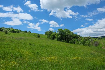 동부 유럽 마을 -Transylvania 지역, 야생화, 관목, 덤 불, 나무와 푸른 하늘이 녹색 초원 흰 구름 봄 스톡 콘텐츠