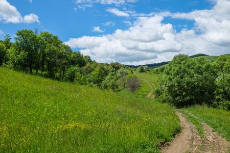 동부 유럽 마을 -Transylvania 지역, 녹색 초원, 야생 꽃, 관목, 덤 불, 나무와 푸른 하늘와 굴곡 더러운 길 흰 구름 봄
