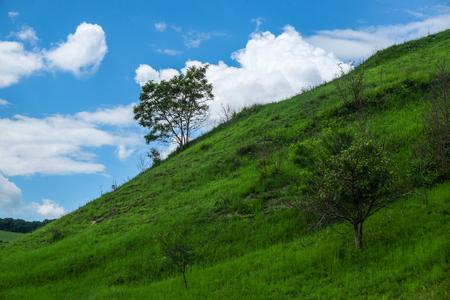 동유럽 풍경-봄에 나무와 푸른 하늘 흰 구름이있는 트란실바니아 지역, 녹색 초원과 언덕 사면
