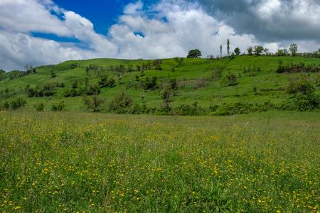 동부 유럽 마을 -Transylvania 지역, 언덕, 관목, 덤 불, 나무와 푸른 하늘이 녹색 초원 봄에서 흰 구름 스톡 콘텐츠