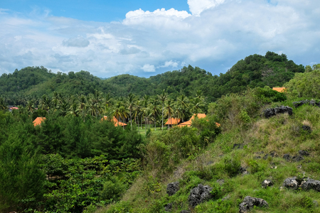 javanese village in the forest with coconut palm trees and rocks close to Pacitan in Indonesia