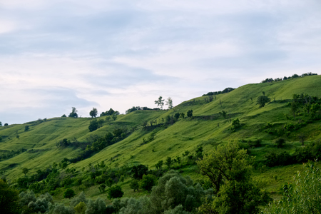 green velvet hill with soft blue sky - slopes with trees and bushes in Transylvania, summer