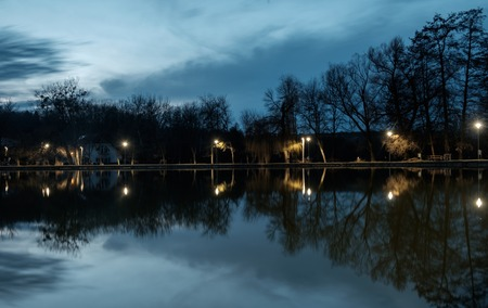 reflecting light spots on calm water, lake in the afternoon, trees with bare branches and cold