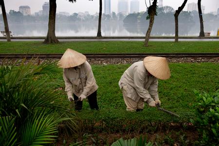 Vietnamise gardeners caring for the garden in Hanoi, foggy lake in background Imagens