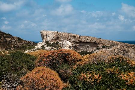 rocks and bushes on Gozo Island hidden part, Malata