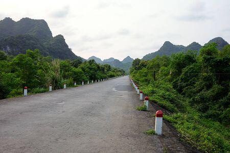 old road through wild landscape of green undergrowth on Cat Ba island, Vietnam