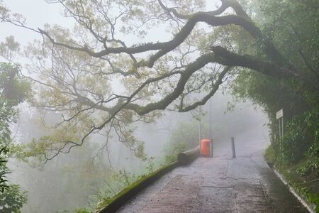 walking and exercising in the tropical forest on the Victoria peak, Hong Kong, China Imagens
