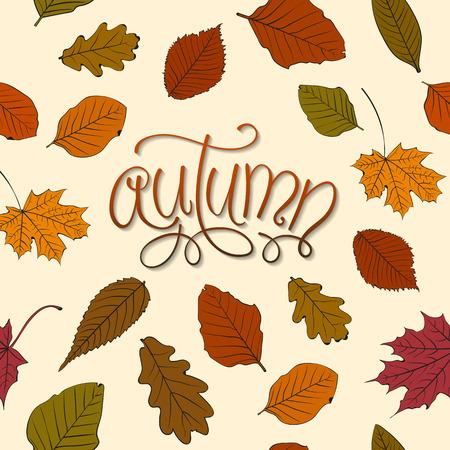 background herfst: Autumn Background