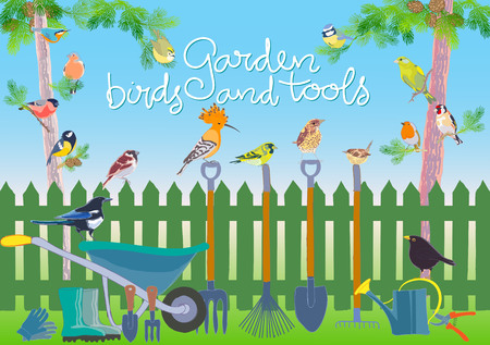 Garden birds and tools set. Hand made vector illustration