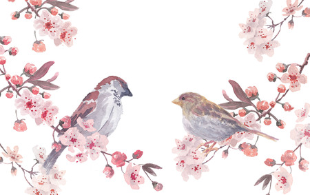 sparrow male and female with cherry branches and blossom wreath. Watercolor handmade vector illustration