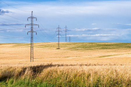 torres de alta tension: High voltage line with electricity pylons surrounded by cultivated fields