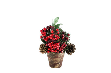 Christmas decoration with various elements in the pot