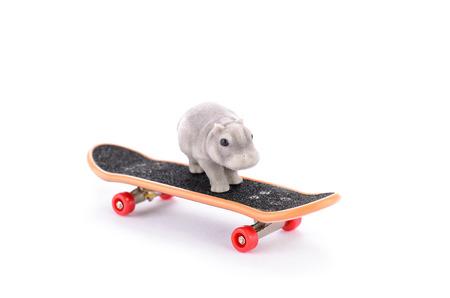 gray hippo on fingerboard Stock Photo