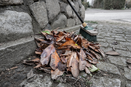 a heap of swept leaves