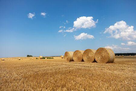 runde Strohballen liegen nach der Getreideernte auf dem Feld
