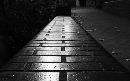 a black and white photograph of a lonely path in the darkness Reklamní fotografie