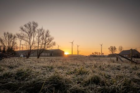a winterland shortly after sunrise and everything is yellow coloured