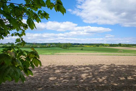 a landscape shot with white clouds in the blue sky and green fields