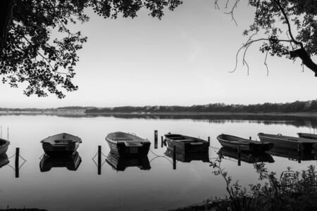 Rowing boats lie next to each other on the shore of a lake in completely calm water