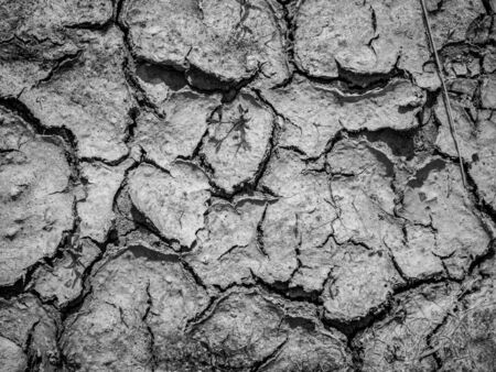 due to drought the soil is fissured and torn and forms a pattern