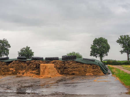 on a large area is a large pile of silage under a green tarpaulin