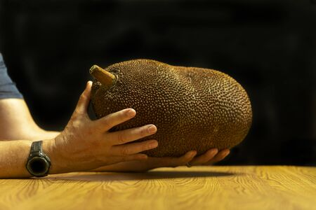 The jackfruit (Artocarpus heterophyllus), is the national fruit of Bangladesh and Sri Lanka, also known as jack tree. Is the largest fruit of all trees reaching as much as 55 kg naturally sweet fruit.
