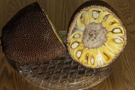 Jackfruit (Artocarpus heterophyllus),  sliced fruit where seeds and flesh can be seen. It is the national fruit of Bangladesh and Sri Lanka and the largest fruit of the tree.