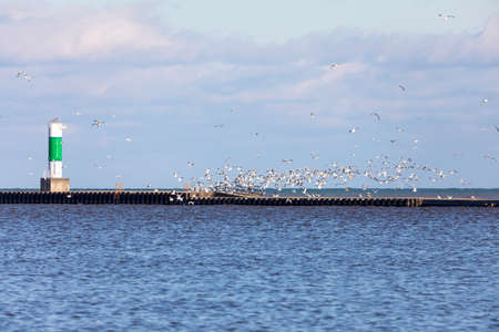 Navigation equipment and a flock of seagulls on Lake Michigan