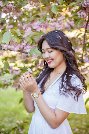 Close-up. Female hands hold petals of pink flowers. Sakura. Blooming trees. Spring. Stockfoto