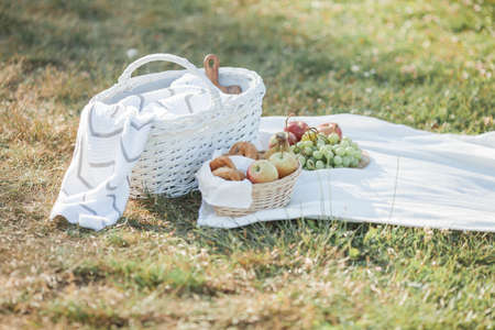 Picnic. Fruit in a basket, a blanket, baked goods in a basket in nature.