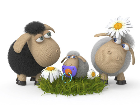 the family of sheep is grazed on a pasture 写真素材