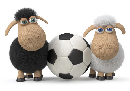 big foot: sheep play soccer in the field