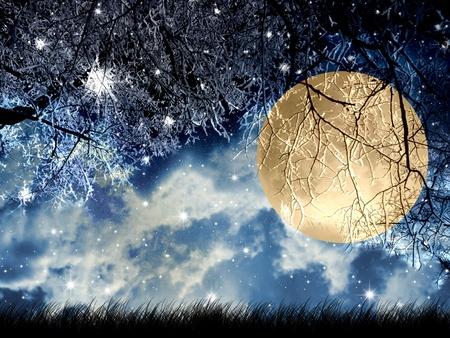 noche y luna: Luna llena en la noche de invierno en madera. Foto de archivo