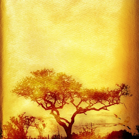yellow african: Textured grunge african paper background with tree and copy space