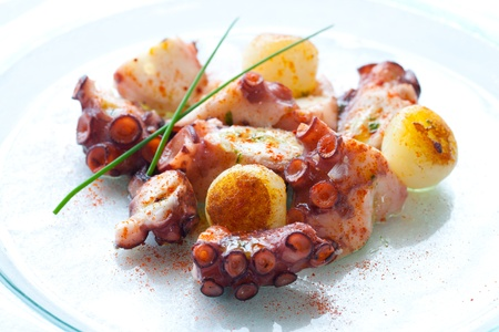 Macro Close up of Octopus appetizer with small potatoes.