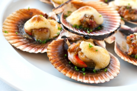 Macro close up of queen scallop starter with garlic dressing. Stock Photo - 13873082